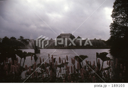 キューガーデンの画像 p1_12
