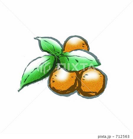 キンカンの画像 p1_31