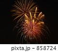 多摩川花火大会 「菊先」