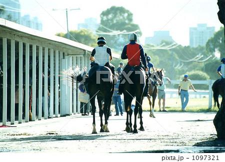 騎手 厩舎 競走馬の写真 画質確認   騎手 厩舎 競走馬の写真素材 [1097321]