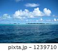 パラオの無人島