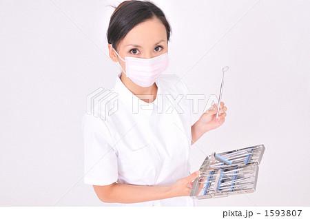 歯科衛生士 1593807  歯科衛生士 画質確認    歯科衛生士の写真素材 [1593807