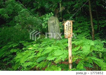 鎌倉で一番怖い宝戒寺の腹切りやぐらを訪れて 1773852  鎌倉で一番怖い宝戒寺の腹切りやぐら
