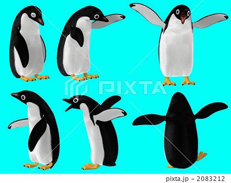 アデリーペンギンの画像 p1_15