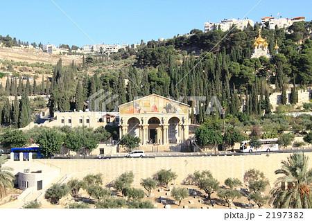 オリーブ山と2つの教会 エルサレム 2197382  オリーブ山と2つの教会 エルサレム  サム