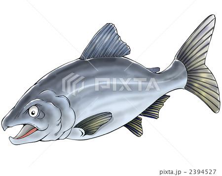 サケの画像 p1_13