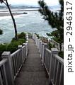 龍王岬から見た桂浜