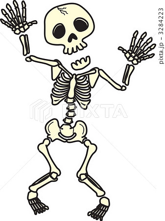 骸骨の画像 p1_1