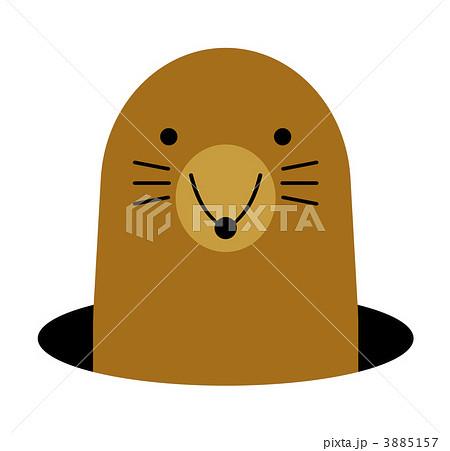 モグラの画像 p1_22