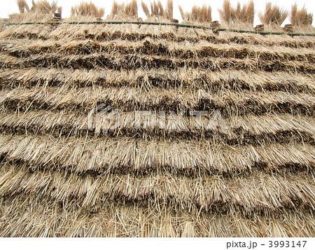 稻草茅草屋顶 穴居-图片素材