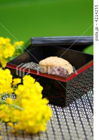 お彼岸イメージ~春~ 4214255   春分の日の写真素材