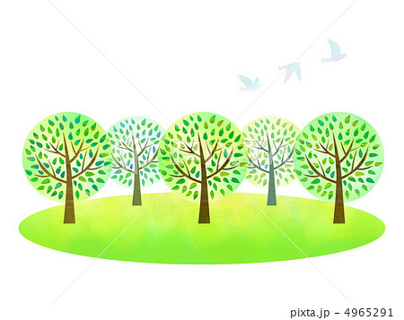 林 4965291 林のイラスト素材 [4965291] - PIXTA