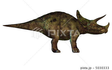 トリケラトプスの画像 p1_7