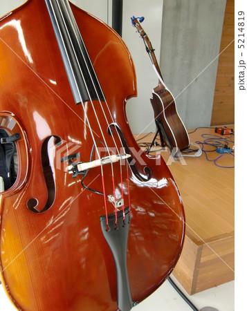 ウッドベース ウッドベース ベースの演奏   ウッドベースの写真・イラスト素材
