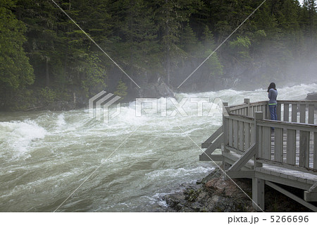 グレイシャー国立公園の画像 p1_4