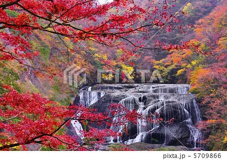 袋田の滝 紅葉の写真素材 ...