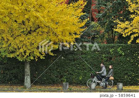 二人乗り 自転車の写真素材 ...