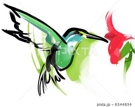 ハチドリの画像 p1_7