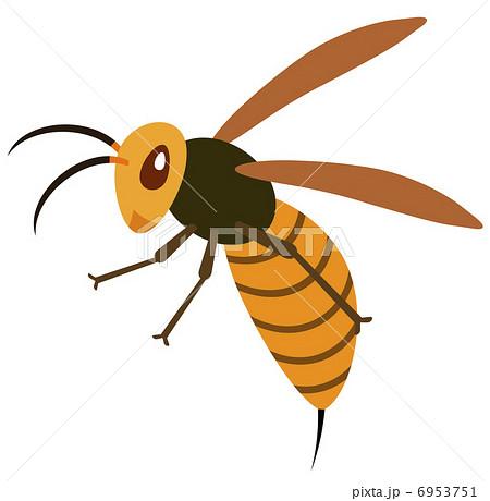 スズメバチの画像 p1_29