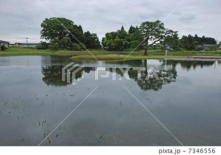 無量光院跡の画像 p1_8