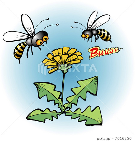 ミツバチの画像 p1_4