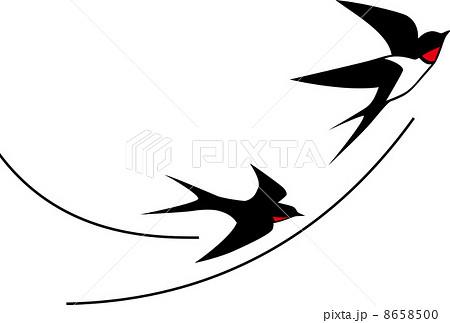 ツバメの画像 p1_21