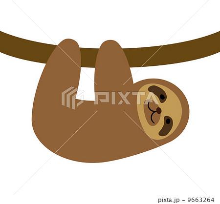 ナマケモノの画像 p1_33