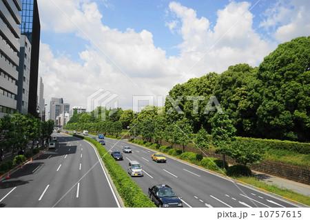 照片: 5月都市の风景街并み467新绿の青山通