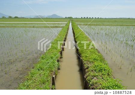 農業用水路 農業用水路 農業用水路   農業用水路の写真・イラスト素材