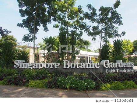 シンガポール植物園の画像 p1_9