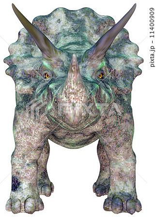 トリケラトプスの画像 p1_24