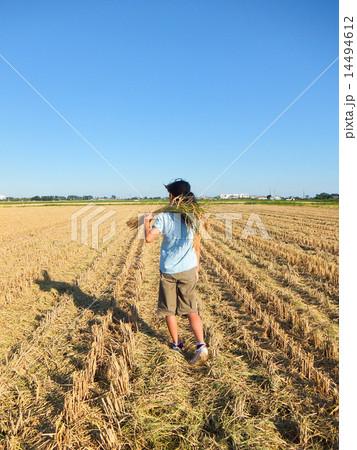 農政 の写真・イラスト素材 1