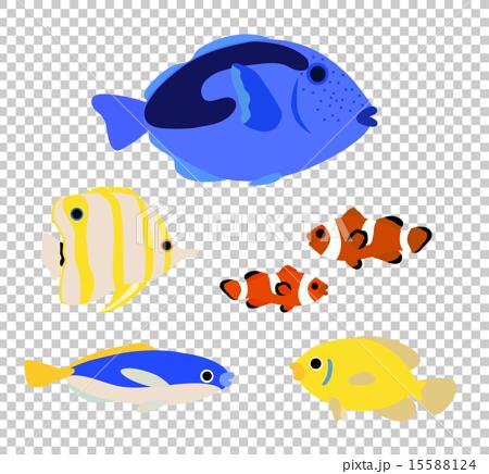 插图 热带鱼 首页 插图 鱼_海鲜 热带鱼 热带鱼  *pixta限定素材仅在