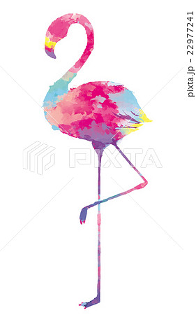 フラミンゴの画像 p1_20