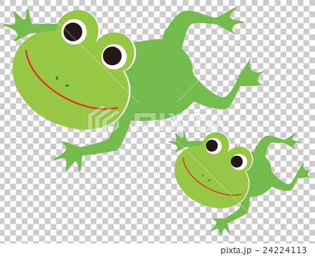 图库插图: 青蛙 游泳 矢量
