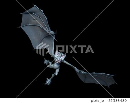 コウモリの画像 p1_10