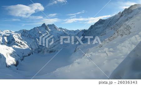 アレッチ氷河の画像 p1_36