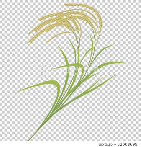 插图 穗饭 首页 插图 料理_食物 米饭类 米饭 穗饭  *pixta限定素材仅