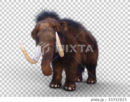 图库插图: 猛犸象 动物 灭绝