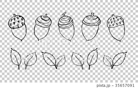 首页 插图 姿势_表情_动作 表情 可爱 矢量 橡果 莓  *pixta限定素材