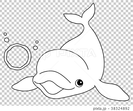 シロイルカの画像 p1_21