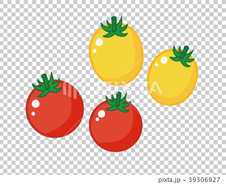 图库插图: 小番茄 樱桃番茄 矢量