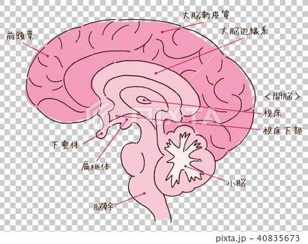 动漫 卡通 漫画 设计 矢量 矢量图 素材 头像 450_356