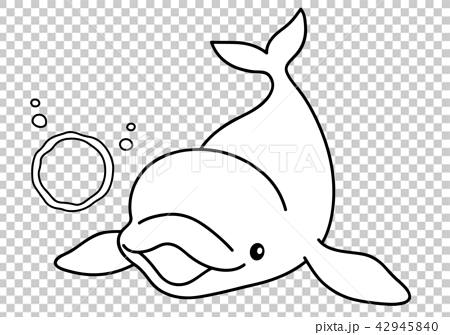 シロイルカの画像 p1_29