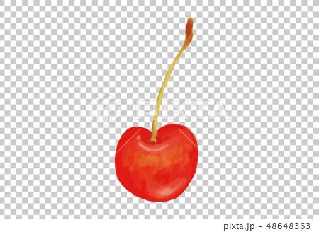 插图素材: 水彩风格的樱桃