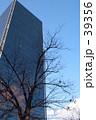 枝の中のビル 39356