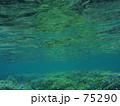 サンゴの森 75290