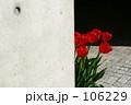 かくれんぼ 106229