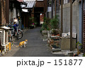 路地裏に猫 ~路地裏探訪~ 151877