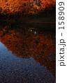 紅鏡 158909